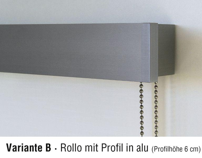 Design-Rollo Variante B